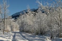Winterweg - Allgäu - Bad Hindelang