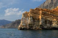 Delfine Oman Fjord