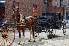 Dublin Pferdekutsche Irland
