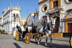 Sevilla Pferdekutsche Spanien